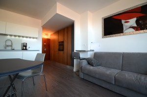 3 Friendly Rentals PARIS